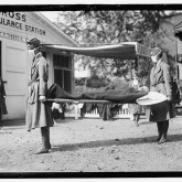 Red Cross Emergency Ambulance Station in Washington, D.C. during the 1918 flu.