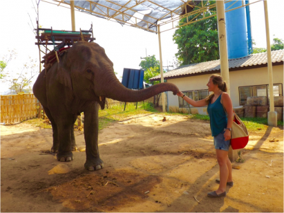 "Hannah Hewes, BSN, meeting an elephant in Northern Thailand while there for the fieldwork portion of <em>Comparing Health Care Systems in an Intercultural Context: Thailand</em>. <br/><br/>""What you cannot see in this photo is my ear-to-ear smile and the elation I felt. In hindsight, that was the way I felt throughout the trip. I was greeted with another world, another perspective, and a great challenge."""